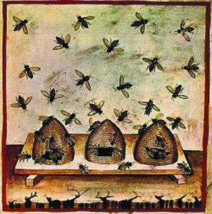 Beekeeping, tacuinum sanitatis casanatensis (14th century)atis,_Casanatense_4182.