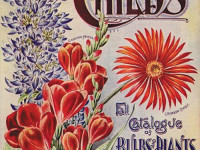 Garden History Depicted in Old Seed Catalogs