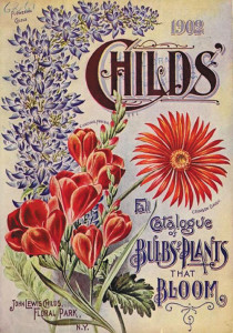 seed-catalog-bulbs-&-plants