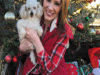 The Appraiser's Diary: Update on Murray, The Toothless Poodle