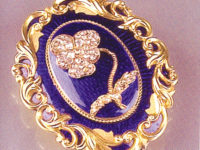 The Beautiful Brooch